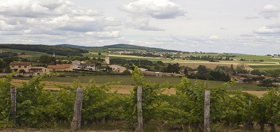 Weekend évasion en Bourgogne : Rendez-vous à Viré !